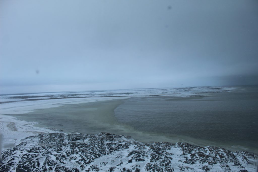 The ice was just beginning to form on the Hudson Bay near Churchill.