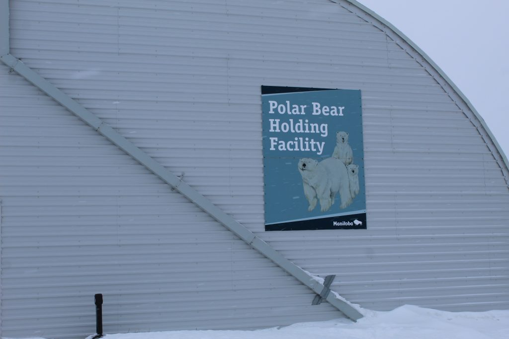 Polar Bear jail