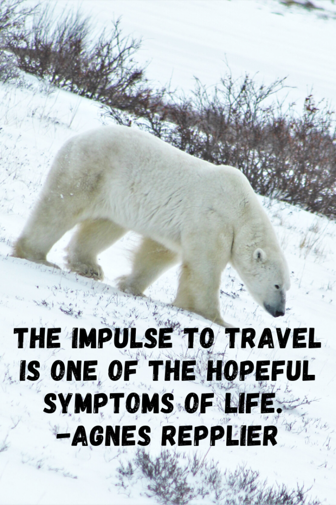 """The impulse to travel is one of the hopeful symptoms of life.""  Agnes Repplier"