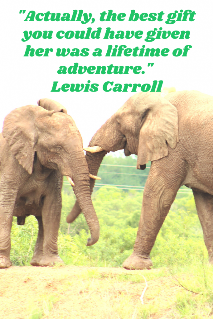 """Actually, the best gift you could have given her was a lifetime of adventure."" Lewis Carroll"