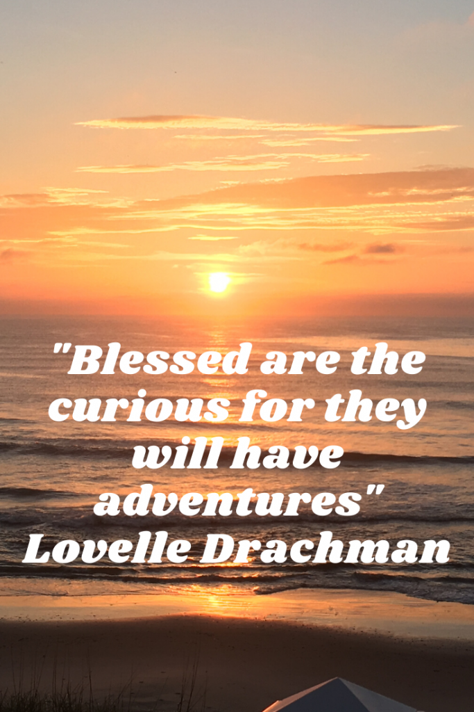 """Blessed are the curious for they will have adventures.""  Lovelle Drachman"