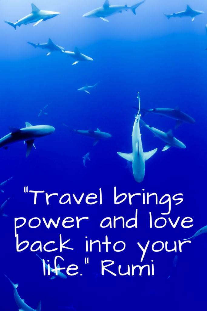 """Travel brings power and love back into your life."" Rumi"