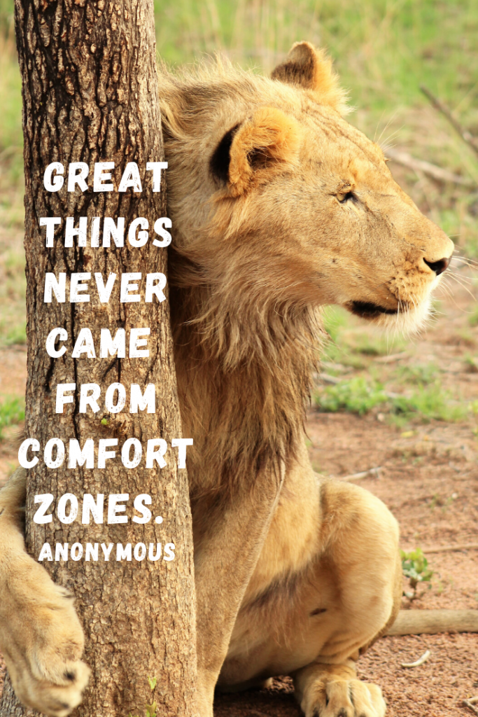 """Great things never came from comfort zones.""  These 50 inspirational travel quotes will help fuel your wanderlust and re-ignite that passion for exploring the amazing world we live in!"