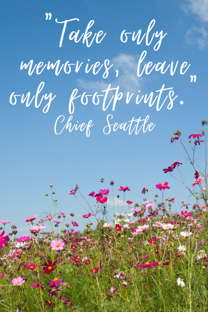 """Take only memories, leave only footprints.""  Chief Seattle"