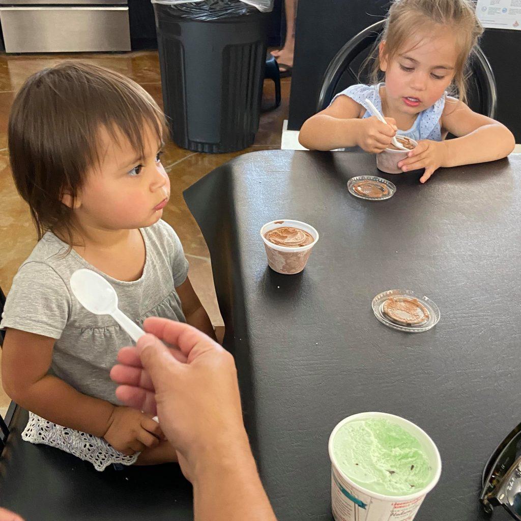 Hansen's Dairy Farm Ice Cream
