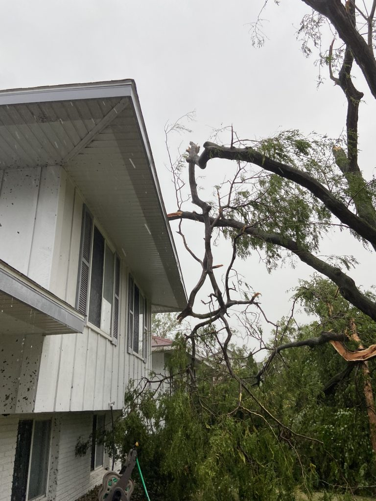 Two giant limbs hanging next to the house after the derecho.