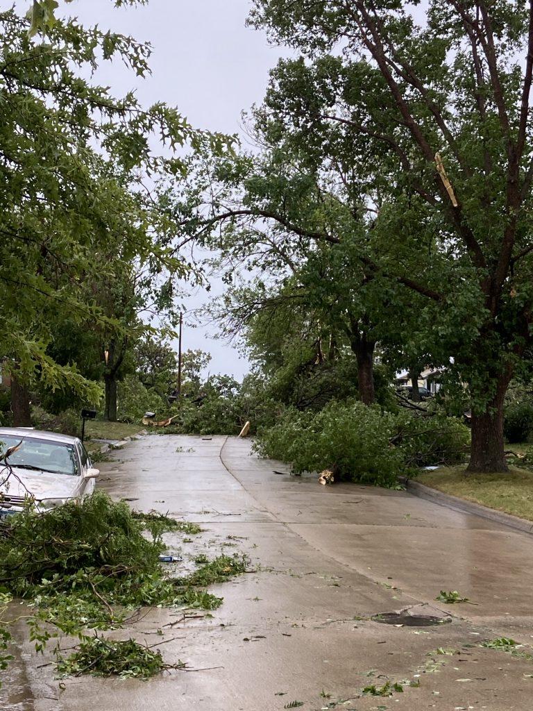 Trees blocked nearly every road.