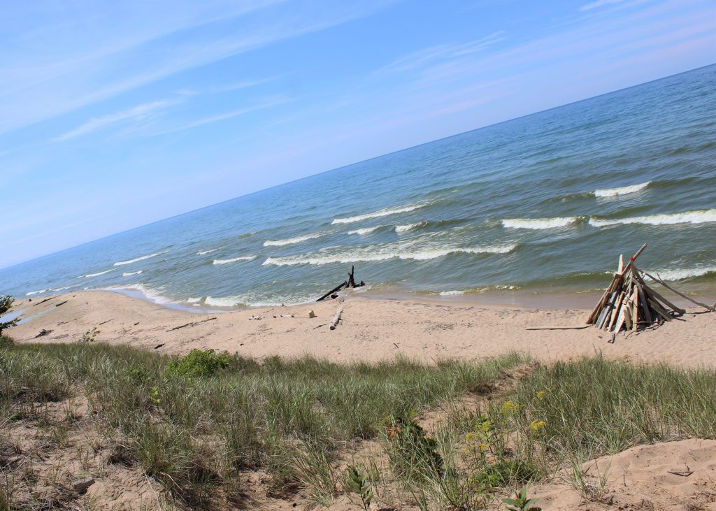 Pioneer Park offers a clean beach for sunbathing, playing in the sand, or even swimming.