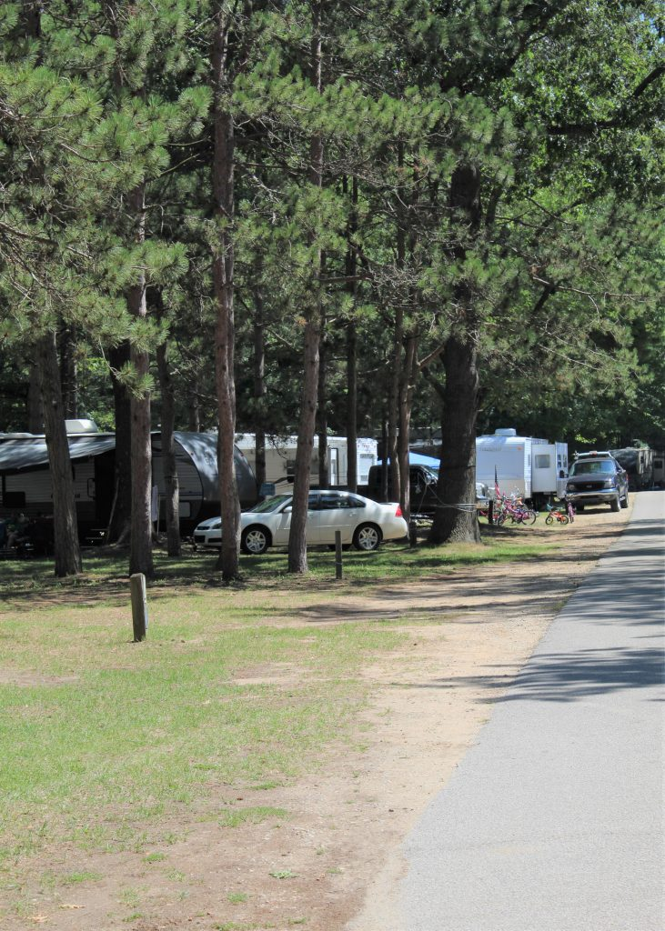 Campsites at Pioneer Park allow anything from tent to large rv's.