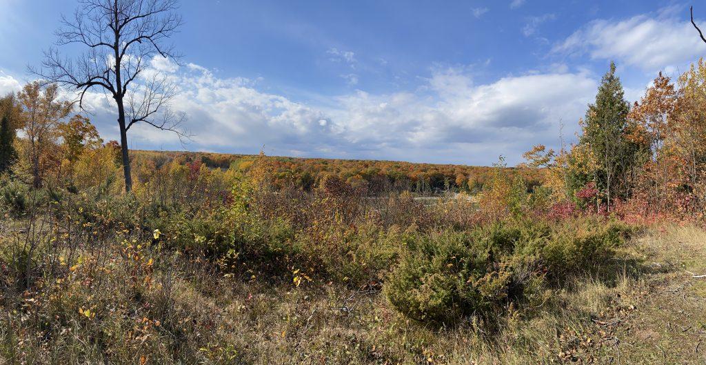 Fall foliage in Door County